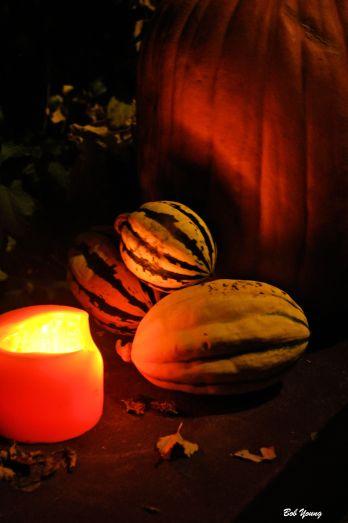 Pumpkin Shadows